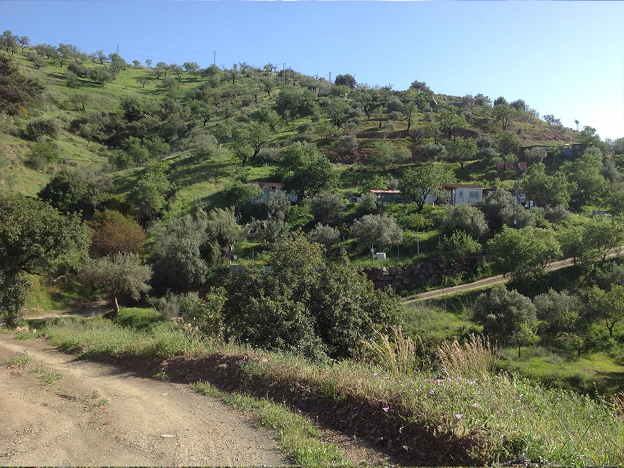 Land for sale Spain – realestate
